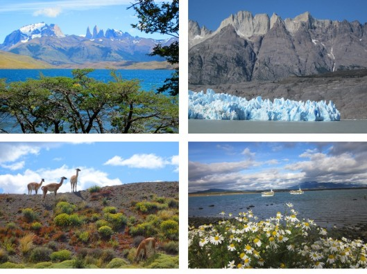 1. The Towers in the background. 2. Gray Glacier calving into Gray Lake. 3. Guanacos. 4. The bay at Natales.