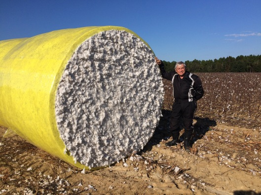 Jim Cotton Bale