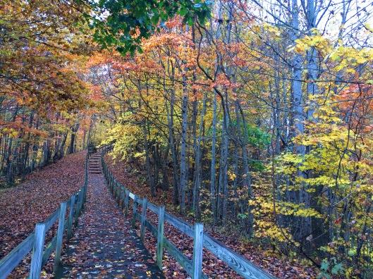 TN Walkway